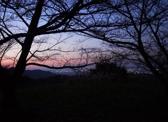 もうちょっと夜景がキラキラしててキレイだったんだけど。