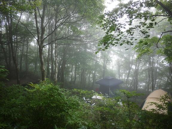 霧の中のテント