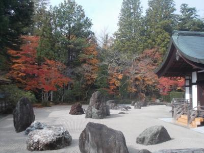 1 高野山参り20131104 (49)