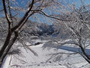 20131228 雪景色1