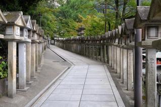 100813shigisan007.jpg