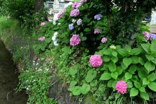 110618tetsugaku013.jpg
