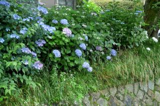 110618tetsugaku018.jpg