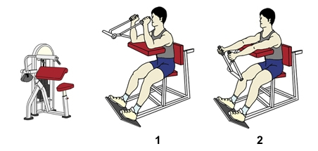 weight-stack-triceps-extension.jpg