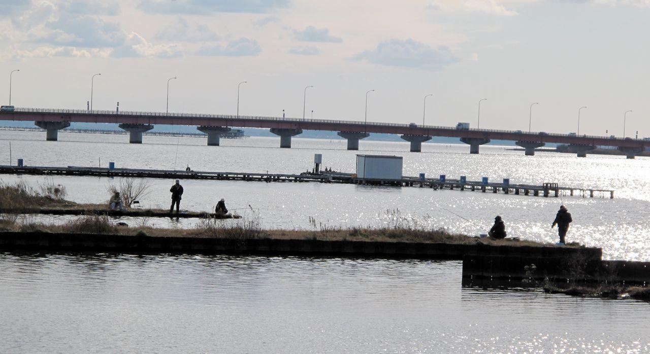 霞ヶ浦大橋の釣り人