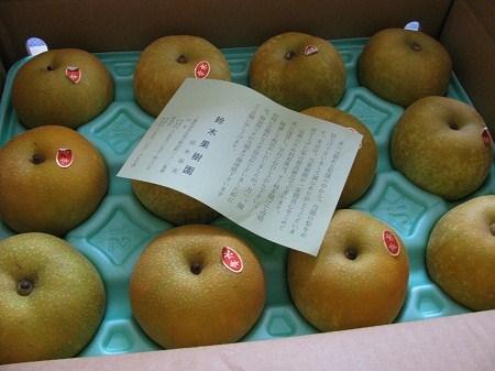 _三重の美味しい梨