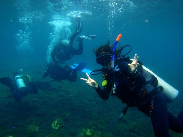 ダイブマスター トレーニング体験ダイビング