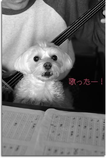 歌ったー!