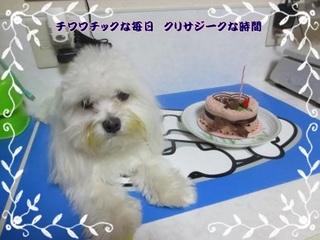 HPIMG_6865-thumbnail2.jpg