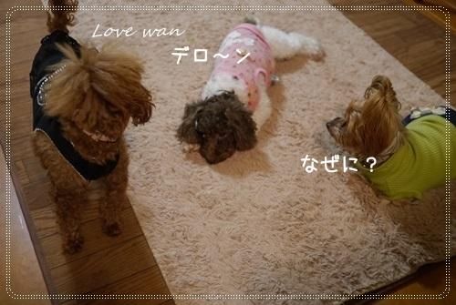 mini2P1250938.jpg