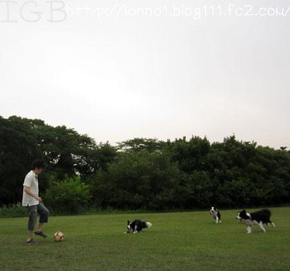 みんなでサッカー♪