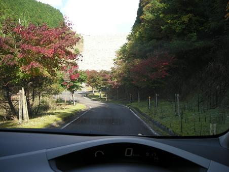 太田池11