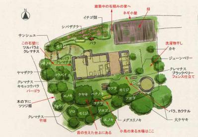 庭の全体図