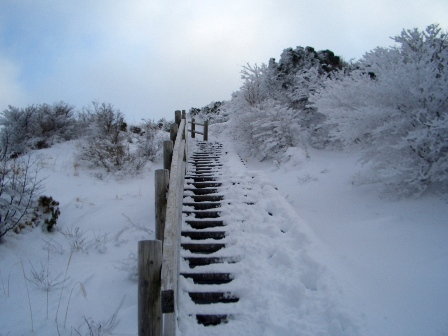 登山道の階段CIMG0052