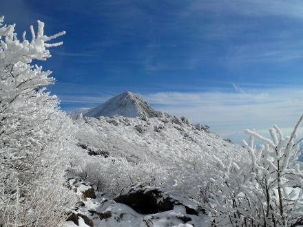 61 下山途中に久住山 (440x330)