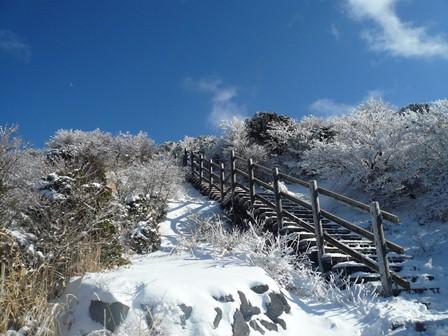 4.登山道の階段