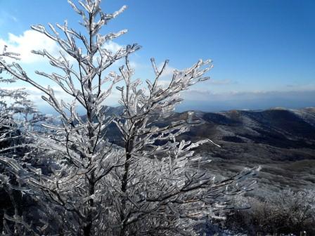 27.樹氷 P1040711