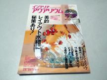 IMGP0142_copy.jpg