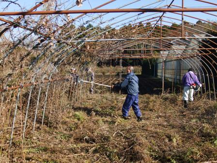 2010.12.18冬の除草