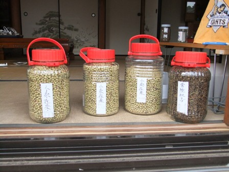 2010.12.18冬の種大豆