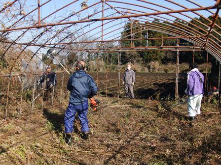 2010.12.18冬のハウス整備