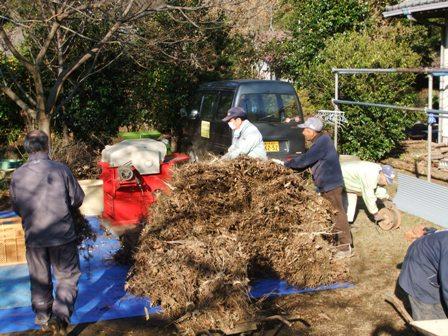2010.12.18冬の大豆脱穀