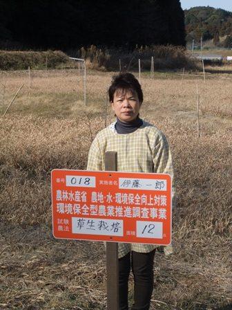 2011.1.9草生栽培
