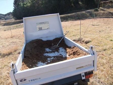 2011.1.30桃園の堆肥撒き 001