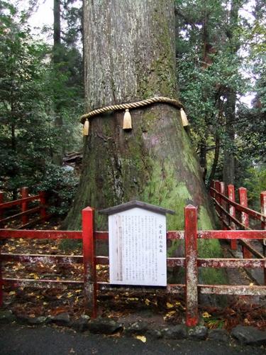 2011.11.20~21 伊豆方面研修旅行 080 (8)