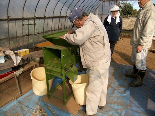 2011.12.10 ファーマーズそばの収穫019 (9)
