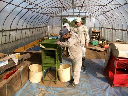 2011.12.10 ファーマーズそばの収穫019 (7)