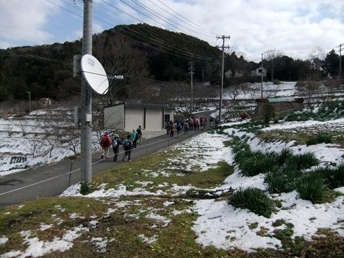 2013.1.16 野山歩き隊(水仙ロード) 021 (9)