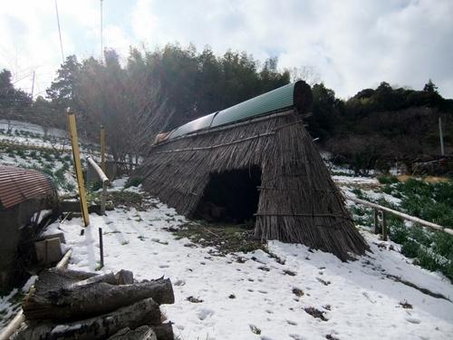 2013.1.16 野山歩き隊(水仙ロード) 021 (12)