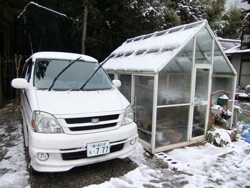 2013.2.20 残り雪庭(滝の谷津) 007 (2)