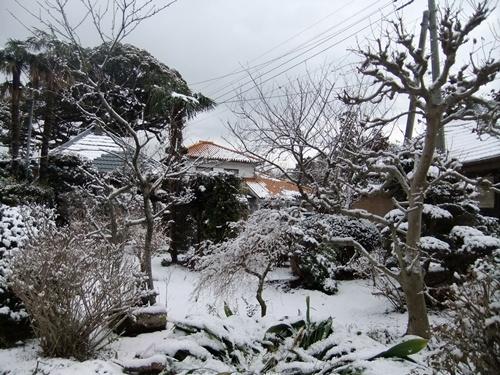 2013.2.20 残り雪庭(滝の谷津) 007 (3)