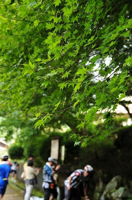 緑の休憩所