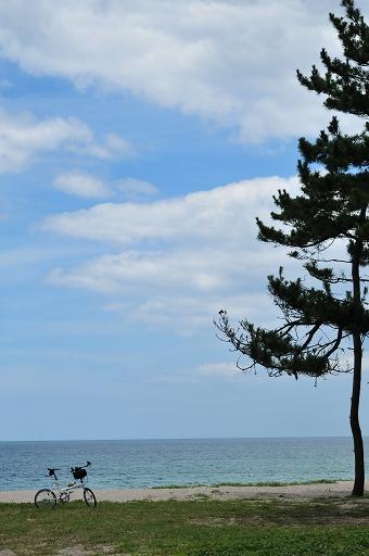 再び海岸に