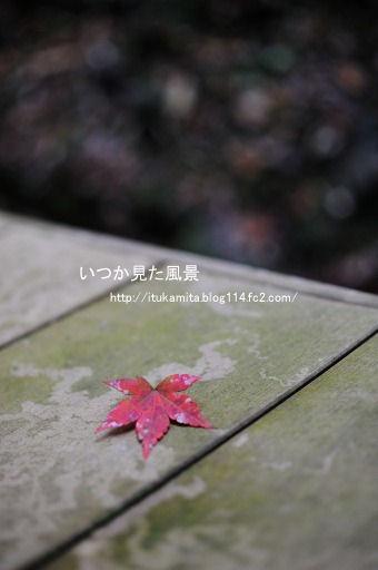 DS7_3285ri-ss.jpg