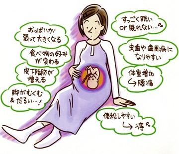 妊娠で変化する3