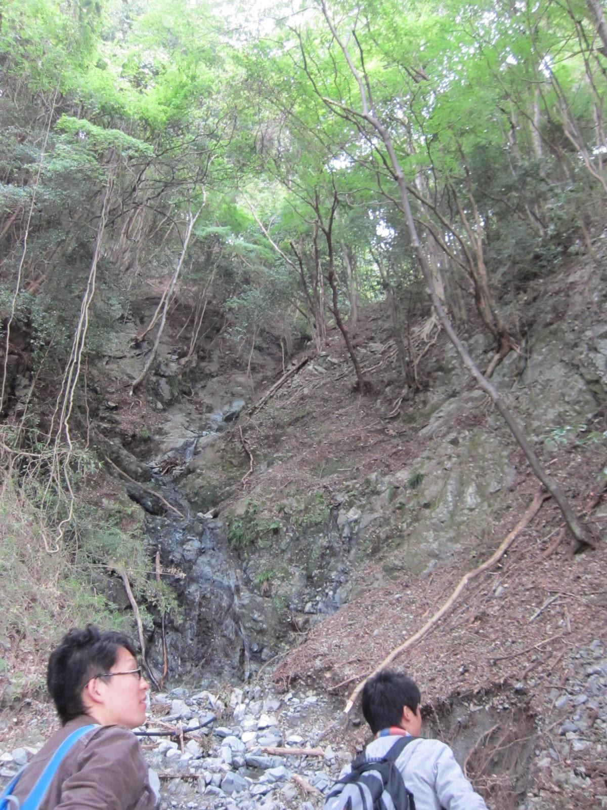丹沢C_緑色岩