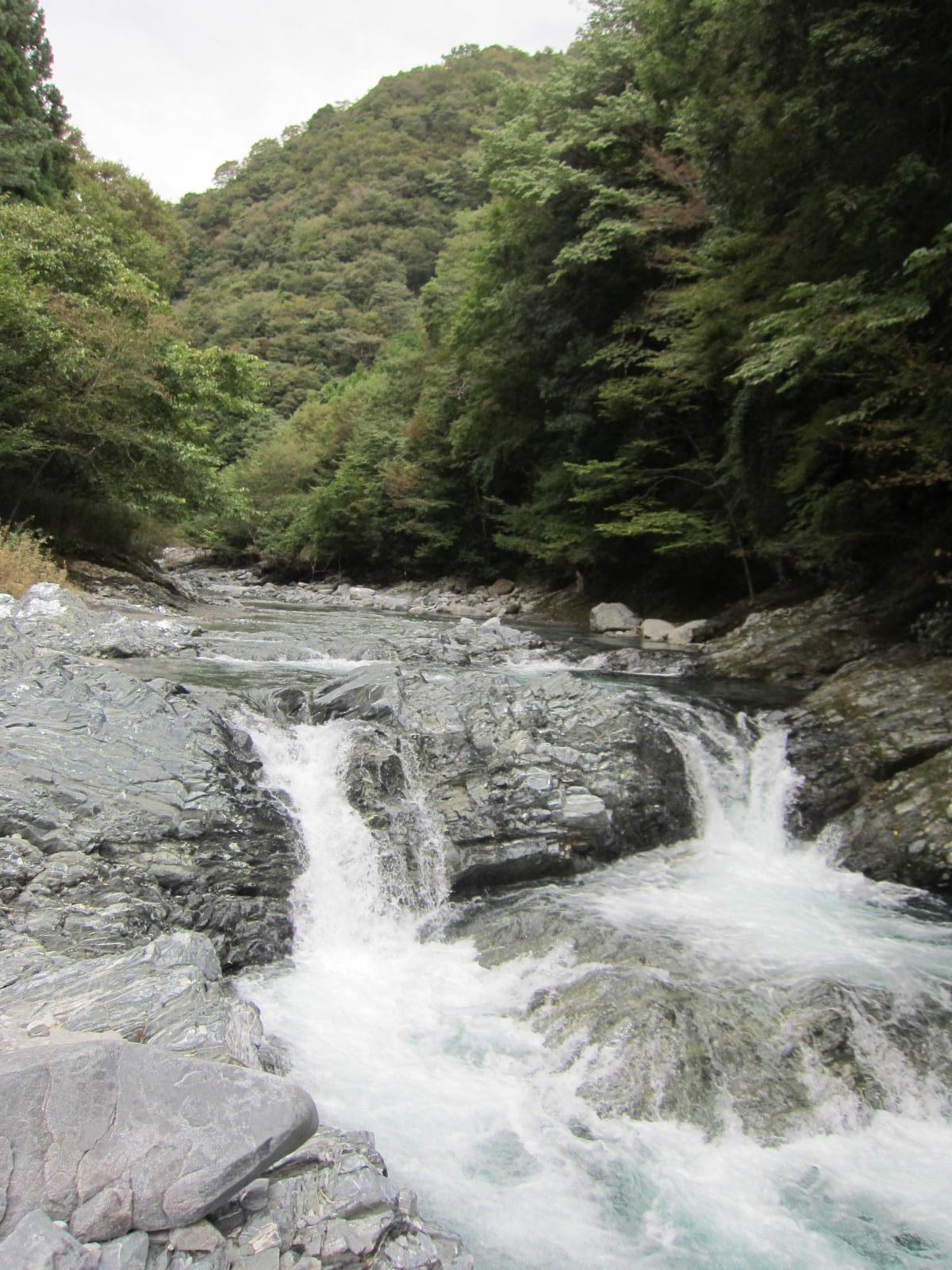 丹沢D_緑色片岩2