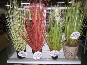 にせ観葉植物