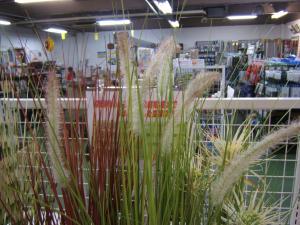 にせ観葉植物2