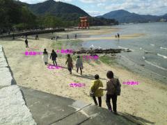DSC_0054-2_convert_20111128225218.jpg