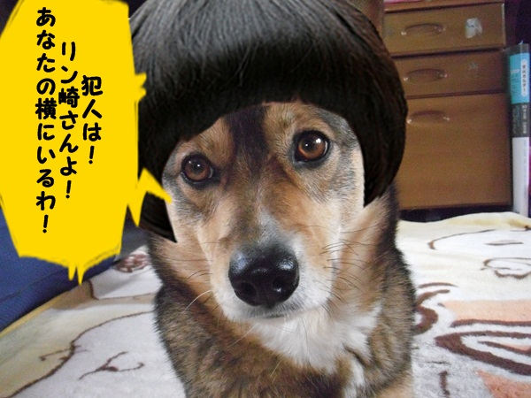 リン刑事4