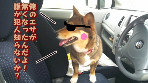 りんちゃん刑事2