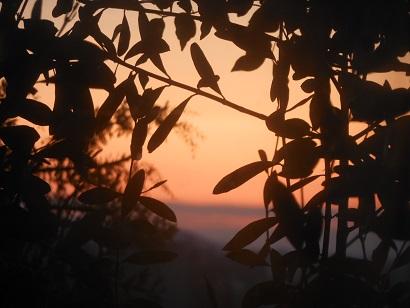 25日朝陽