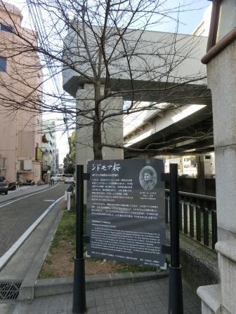 横浜碑もとく 38