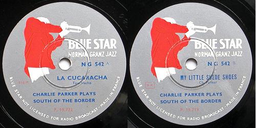 bluestarng542.jpg