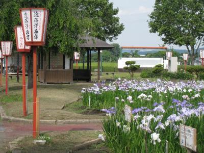浅舞公園②